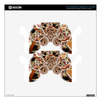 Sushi PS3 Controller Skins