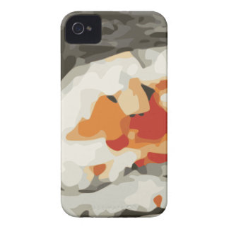 Sushi Roll Japanese Food Lover iPhone 4 Cases