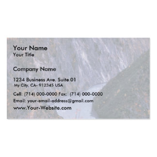 Susitna River Canyon Business Card