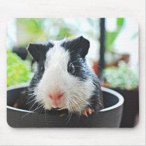 Suspect Guinea Pig Mouse Pad