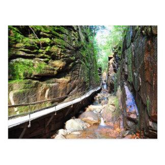 Suspended Path Stream Franconia Notch NH Postcard