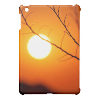 Suspended sunset case for the iPad mini