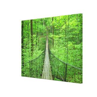 Suspension Bridge Canvas Print