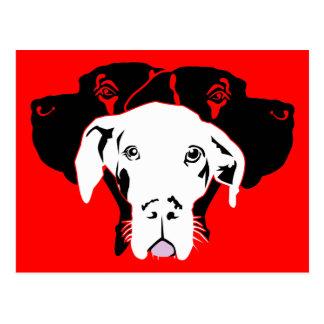 Süße Dogge in weiß Postcard