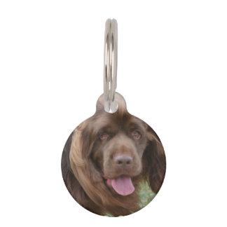 Sussex Spaniel Pet ID Tag