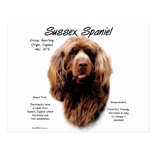 Sussex Spaniel History Design Postcard