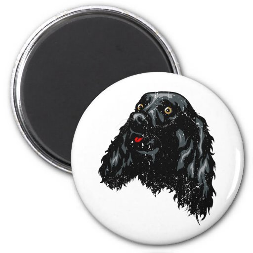 Sussex Spaniel Magnets