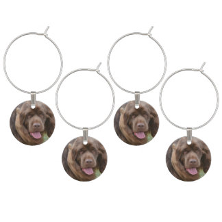Sussex Spaniel Wine Charms
