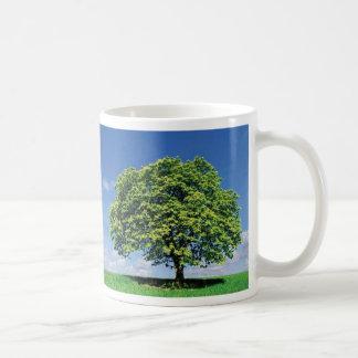 Sustainability Picture Mug