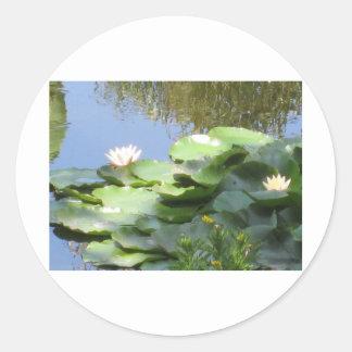Sustainable Designs Classic Round Sticker