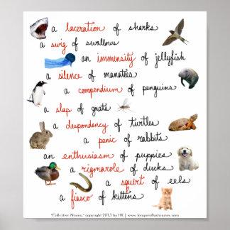 Sustantivos colectivos: posters