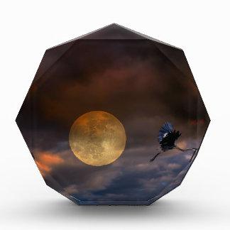 Susto estupendo de la luna