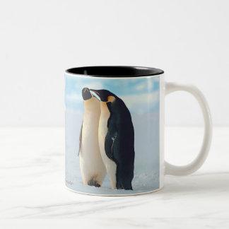 Susurro del pingüino tazas