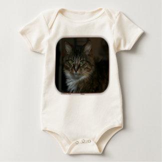 Susurro: gato de tabby rescatado traje de bebé