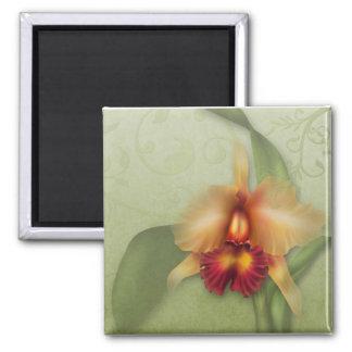 Susurros de la orquídea imán cuadrado