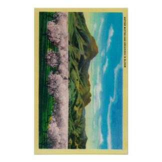 Sutter Buttes and Orchards in Bloom Poster