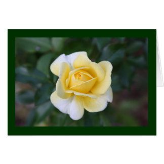 Suzanne's yellow rose stationery note card