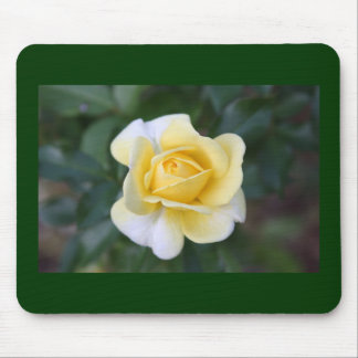 Suzanne's Yellow Rose Mouse Pad