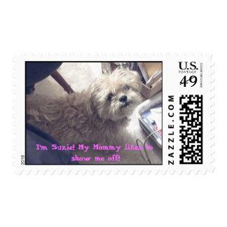 Suzie 2, I'm Suzie!! My Mommy likes to show me ... Postage Stamp