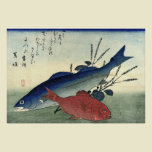 Suzuki & Kimmedai from A Shoal of Fishes