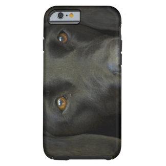 Svart Labrador hund Tough iPhone 6 Case