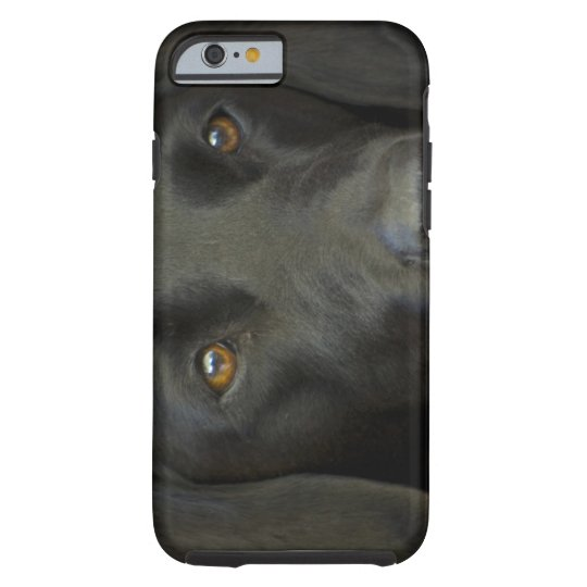Svart Labrador hund Tough iPhone 6 Case