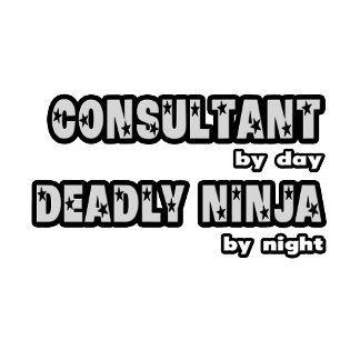 Consultant By Day...Deadly Ninja By Night