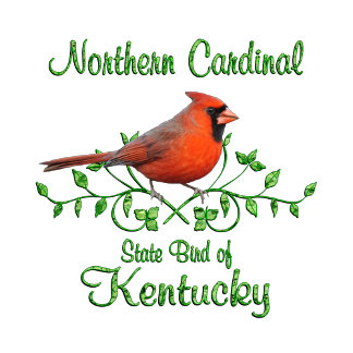 Cardinal Kentucky Bird