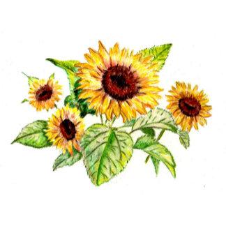 Flowers, Fruit, Leaves, Trees