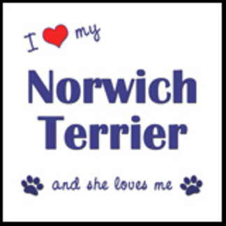 I Love My Norwich Terrier (Female Dog)