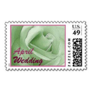 SEASONS Wedding Items