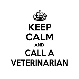 Keep Calm and Call a Veterinarian