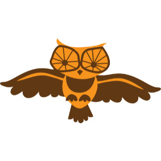 HOOT HOOT owl