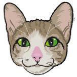 cat shirt.png