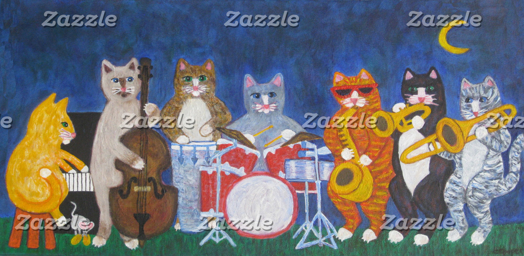Salsa Cat Band at Night