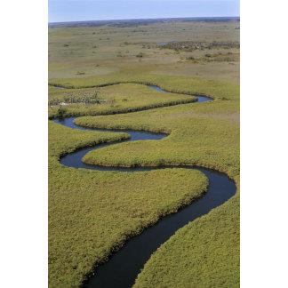 Botswana, Africa. Arial view Okavango river.