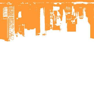 FF9933 - Vivid Orange