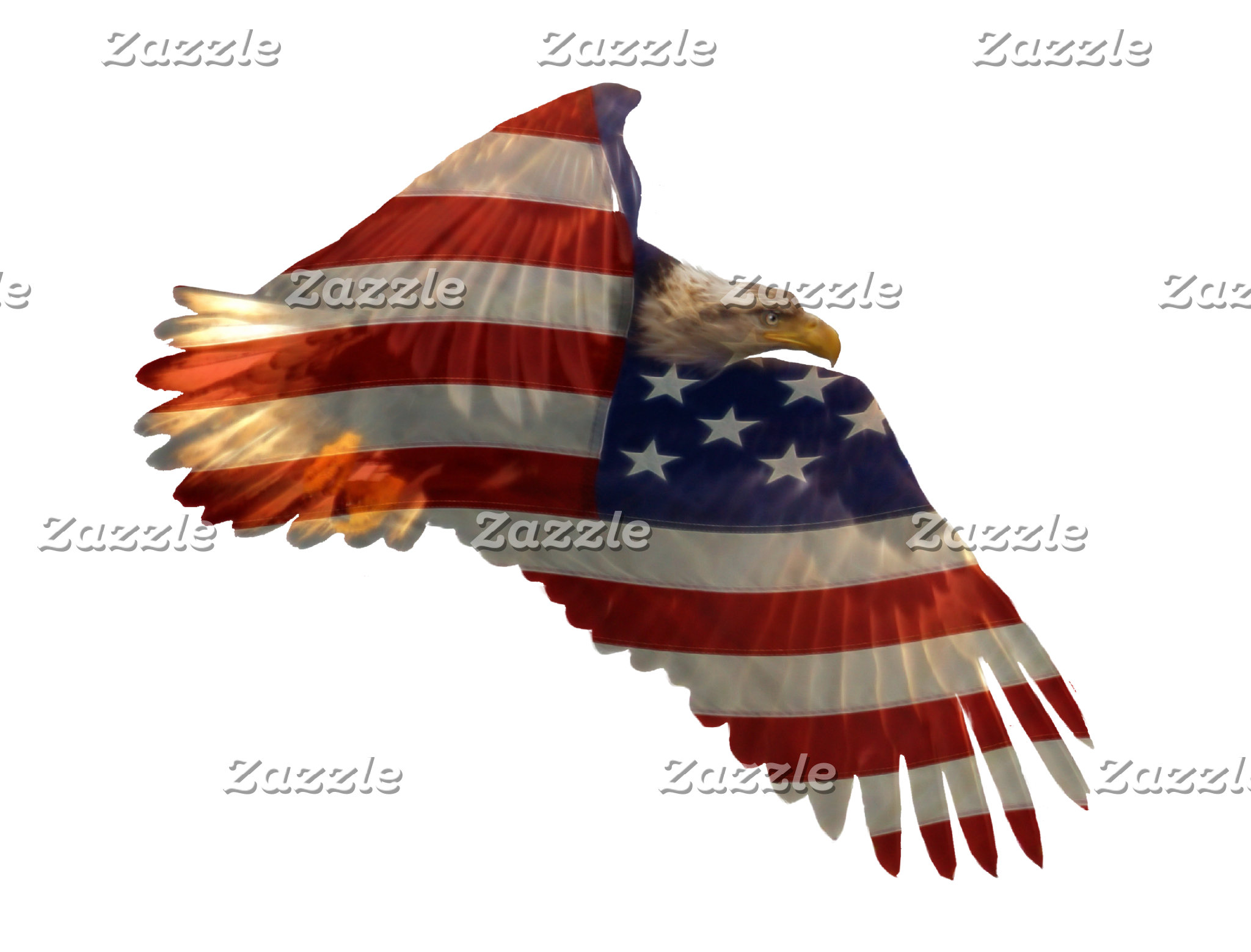 PATRIOTIC, FLAGS and POLITICAL