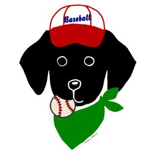 Black Lab Puppy Baseball Player!!!