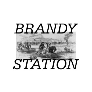 Brandy Station/Cedar Mountain