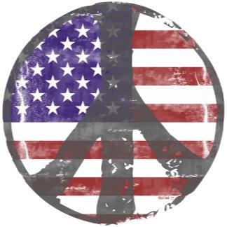 Peace & Environment