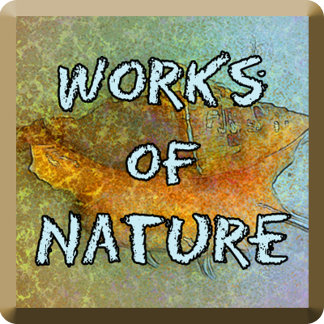 Works of Nature