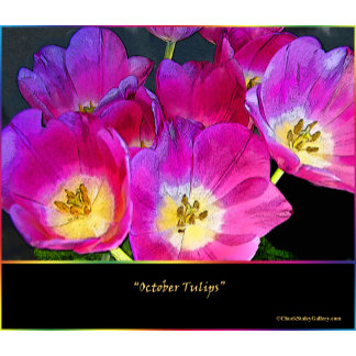 """October Tulips"" Collection"