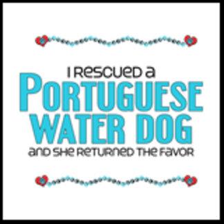 I Rescued a Portuguese Water Dog (Female Dog)