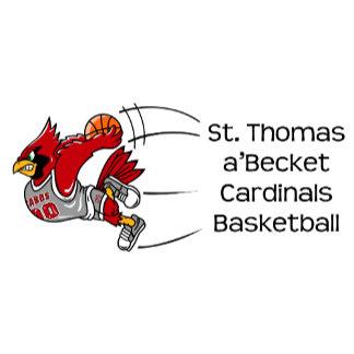 STAB cardinals basketball print