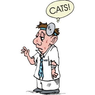 Cat Cats Kitten Vet Veterinary Veterinarian Animal