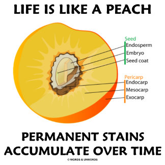 Life Is Like A Peach Permanent Stains Accumulate