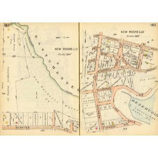 162163 New Rochelle