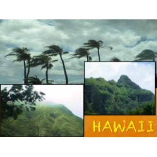 HAWAII COLLAGE #24