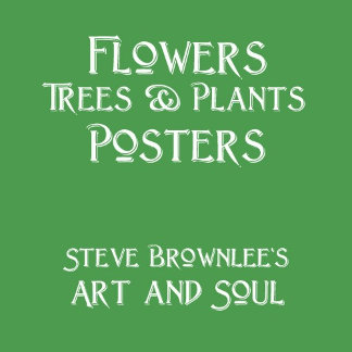 Flowers / Trees Posters
